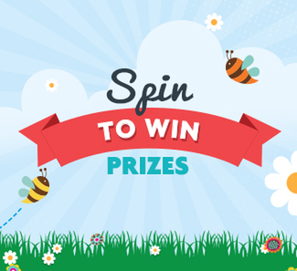 Spin to Win prizes